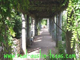Austin Tourism - Lady Bird Wildflower Center - Austin Texas