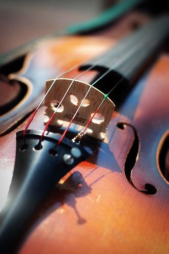 209b:365 Violin