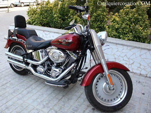 Harley Davidson ( II )