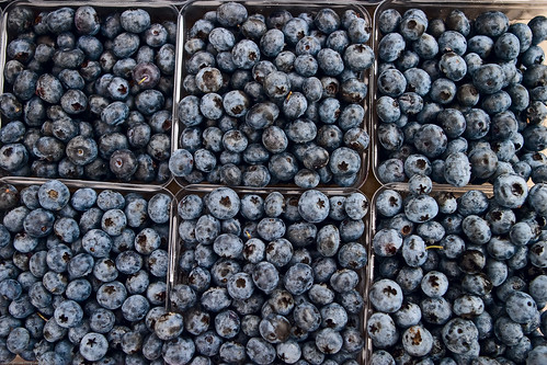 Blueberry, Farmers Market / 20090828.10D.51925.P1 / SML (by See-ming Lee 李思明 SML)