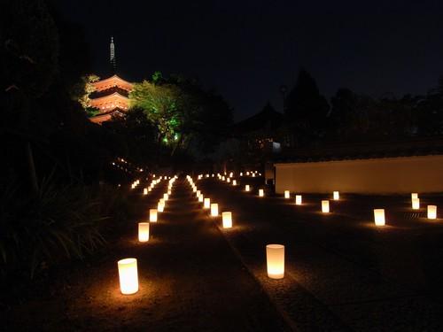 飛鳥光の回廊「岡寺」