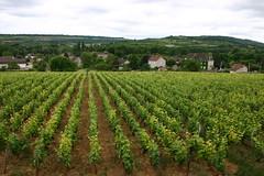 France et la Bourgogne 68 (Lucky B) Tags: france pniche barge bougogne