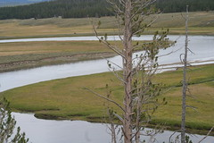 Meandering Yellowstone River (mihir) Tags: colors yellowstonepark grandcanyonofyellowstone yellowstonecanyonarea