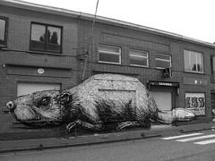 streetart in doel (wojofoto) Tags: streetart graffiti doel belgie belgium roa wojofoto wolfgangjosten