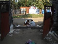 Making Rangoli on door step , Diwali celebration with family : Sarni, Madhya Pradesh, India (dushyant_fst) Tags: india lakshmi deep firework festivaloflight monika ganesh cracker diwali hinduism crackers deepawali rangoli ganeshji 429 superd sarni goddessofwealth lakshmiji subhdiwali dushyantgadewal shobharamgadewal manjulatagadewal