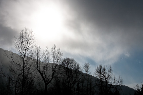 Sunny & Snowing