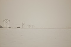 Gloomy foggy powerlined field (Cody La Bire) Tags: winter snow field dark gloomy flat cloudy snowy foggy powerlines hydro land powerline miles distance wasteland veryflat gloomywinter gloomyprairie veryflatfield