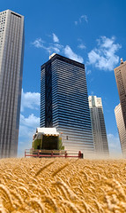 Urban farming - CleanSpeak Blog - Steve McGrath