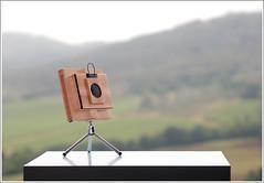 """the Owl"" pinhole 40mm f200 LF (Gustavo Coscienza si assenta da flichr) Tags: wood analog grande inch angle wide large pinhole owl 4x5 lf format 40mm beech deg 9x12 f200 legno faggio formato 10x12 stenopeica stenopeico pollici 125"