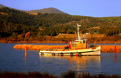 Late afternoon GLOW..... (Lani Elliott) Tags: water river boat boats huonriver afternoonglow light radiant scene scenictasmania tasmania australia