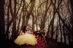 27/52 ~Vincit qui se vincit~ (abi.garvey) Tags: selfportrait self selfportraitproject myself lifeofanartist fantasy nikon fairytalephotography fairytale enchanted beauty beast disney