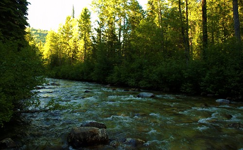 Erie Creek