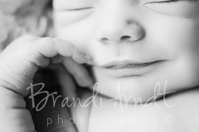 1©Brandi Arndt edmonton newborn photographer do not copy