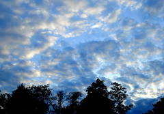 """Message in a Cloud"" (Clara Hinton) Tags: blue sky nature silhouette clouds interesting bluesky eveningsky fluffyclouds clarahinton messageinacloud"