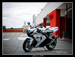 GSX-R 1000 k9 (Antonin Douard) Tags: white m1 r 600 moto k2 suzuki motogp k8 rossi 1000 gsx k6 gp exhaust k9 yzr k4 k5 gsxr k1 k3 750 vermeulen k7 gsv capirossi akrapovic rizoma gsvr lightec ermax