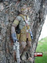 McQuarrie Concept Chewbacca