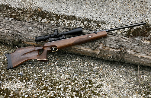 The World's Best Photos of rifle and walnut - Flickr Hive Mind