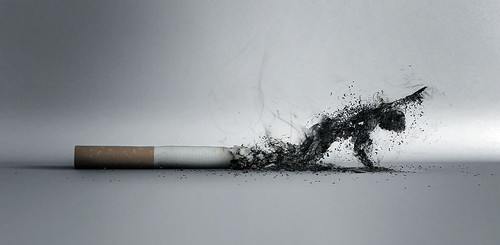 The_Smoke_by_lucaszoltowski_003