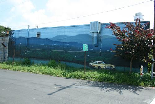 Haywood Road Wall Mural - IMG_1429