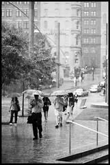 Walking in the rain (Zouloukistan) Tags: bw canada rain umbrella nikon quebec montreal 100 f80 agfa apx parapluie quitasol zouloukistan