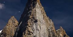 el petit dru _025 (tomas meson) Tags: dru mountain snow alps montagne alpes landscape climb nikon d70 via mount climbing alpinismo chamonix alpi montblanc oeste valle amricaine ouest directe lafaille effondrement boulement petitdru tomasmeson caraoeste directaamericana ladirecteamricaine