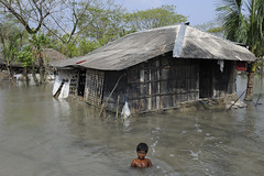 A very big bath (DFID - UK Department for International Development) Tags: water copenhagen flooding monsoon bangladesh climatechange climate internationaldevelopment ukgovernment dfid cop15