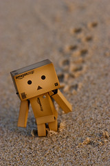 Have a walk in the evening (Ali Tse) Tags: summer macro beach toy toys amazon walk footsteps limited footprint danbo revoltech jfigure danboard