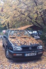 Esen // Autumn
