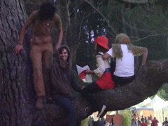 Get down from that tree, Generation Y!