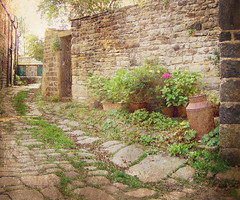 Cobbled Alley (vesna1962) Tags: flowers england plants west texture wall alley scenery gate iron village yorkshire cobbled pots churchyard legacy sincity cottages hebdenbridge twop heptonstall milkchurn memoriesbook vanagram skcphotos flickrvault magicunicornverybest selectbestfavorites sailsevenseas trolledproud grungymess newgoldenseal lightlyworn