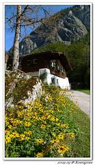 23 (bearnbear - Bavaria) Tags: knigssee