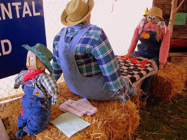 09 TN State Fair #23: Checkers display