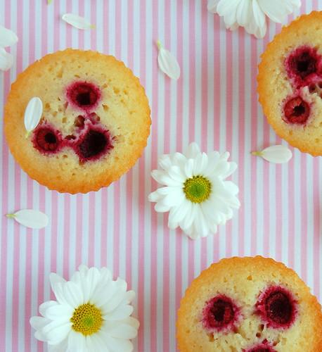 Almond, vanilla and raspberry friands / Friands de baunilha, amêndoa e framboesa