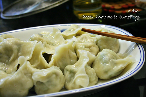 homemade dumplings!