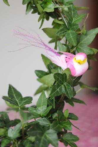 Rosa fågel - närbild