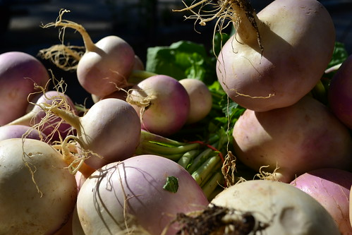 Turnips Basking in the Sun