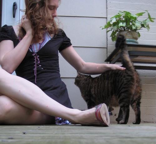 06-29 cat