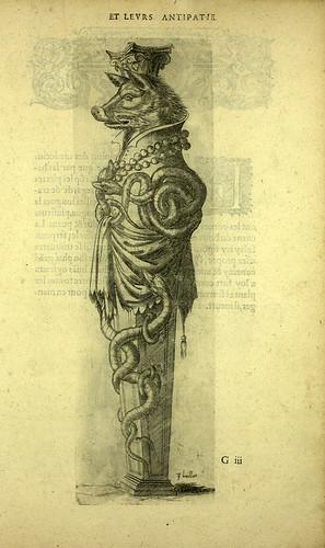006-Jabali-Joseph Boillot 1592