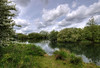 England: Northamptonshire - Riverbank (Tim Blessed) Tags: uk trees sky nature water clouds landscapes countryside scenery ducks rivers ponds englishcountryside singlerawtonemapped