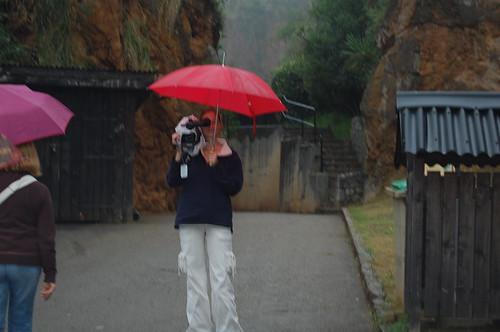 Vacances Cantabria Estiu 2008 066