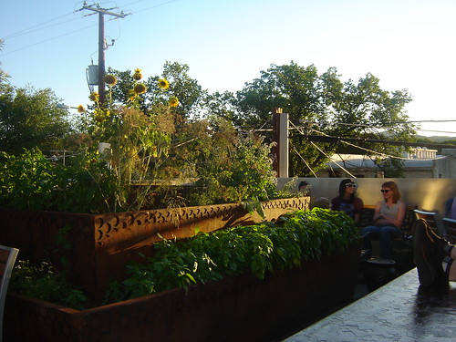 Rooftop Organic Garden at The Raven Cafe by ariztravel, on Flickr