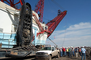 Close-up:  Queen Anne Dragline