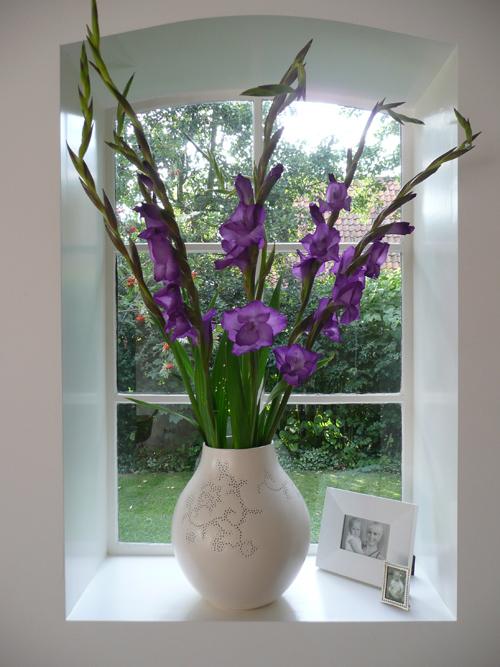 purple gladiolas