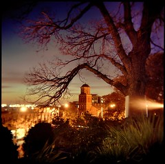 flagstaffscape #1 (mugley) Tags: plants colour tree 120 6x6 film church gardens night mediumformat holga twilight fuji bare branches australia melbourne victoria scan negative squareformat fl