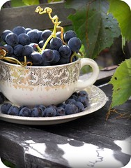 Cup of sweet grapes (Blondieyooper) Tags: shadow food fall up sunshine fruit yard backyard october yum michigan tasty plate grapes teacup 2009 homegrown grapevine negaunee fallharvest