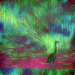 Heron (Tedje51) Tags: bird photoshop digitalart reality legacy soe reiger vogel ourtime theart mywinners anawesomeshot diamondclassphotographer flickrdiamond sharingart awardtree miasbest daarklands flickrvault magicunicornverybest trolledproud newgoldenseal