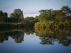 Hackensack River backwater