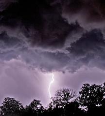 Lightning Up the Sky (jhhwild) Tags: california sky storm up electricity lightning redding