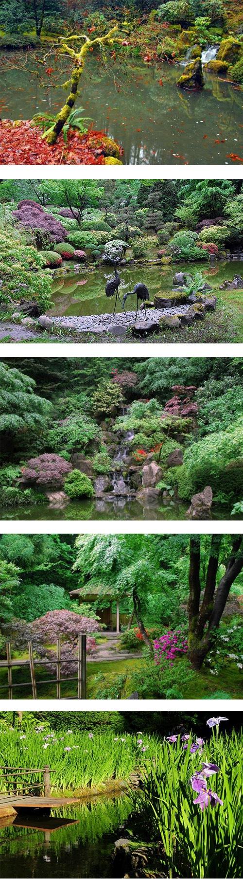 Portland Japanese Garden 1