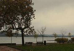 November Rain (Vento nei Capelli) Tags: novembre grigio pioggia deserto buio lungolago desolato
